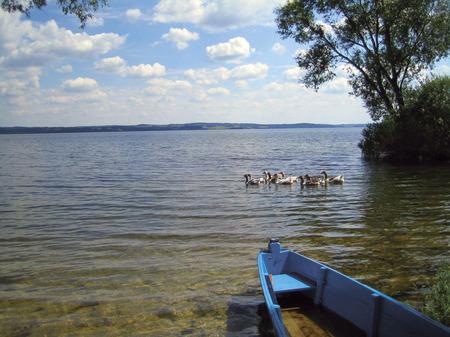 Виштынецкий эколого-исторический музей w1408, официальный сайт. Озеро виштынецкое памятник природы, самое глубокое ледниковое озеро.